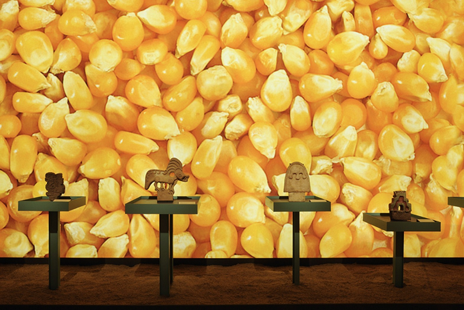 קירות דקורטיביים במוזיאונים ואולמות תצוגה 3D Feel